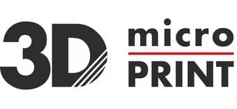 MicroPrint logo
