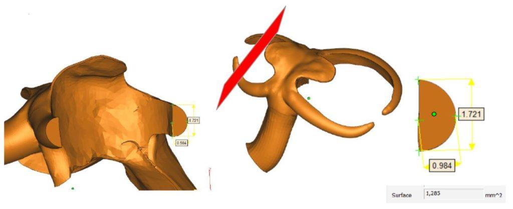 projektowanie_konstrukcji_szkieletowych_pod_DMLS_SLM_9